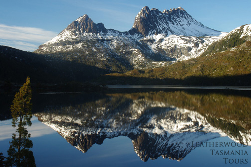 クレイドルマウンテン国立公園 世界自然遺産 タスマニア