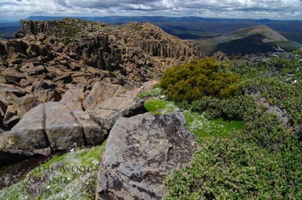 クレイドルマウンテン山頂ハイキング