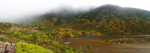 ターンシェルフ タスマニア自然撮影ツアー