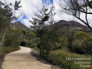 フレシネ国立公園タスマニア Freycinet walk and cycle track