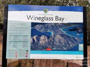 ワイングラスベイ展望台ハイキングタスマニア