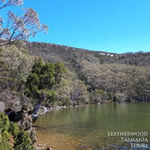 ドブソン湖マウントフィールド国立公園タスマニア