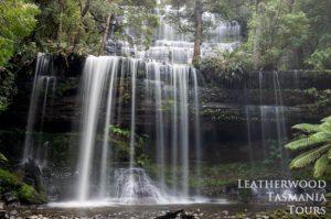マウントフィールド国立公園・ルッセルの滝
