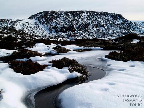 冬の景色 マウントフィールド国立公園 タスマニア