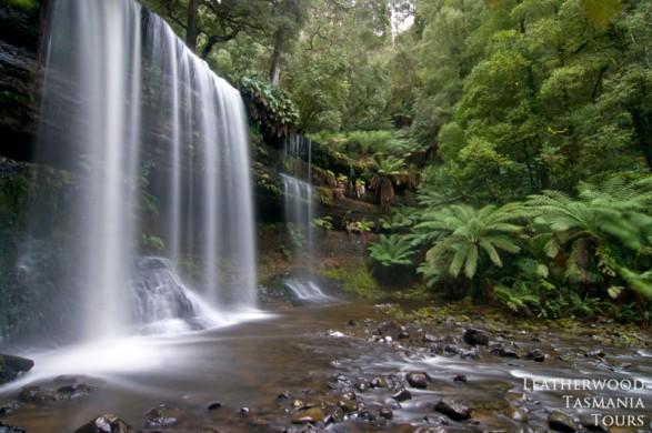 ラッセル滝 マウントフィールド国立公園も世界遺産に