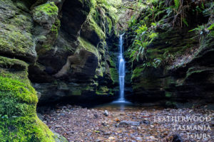 ウェリントン山シークレットフォールズ秘密の滝