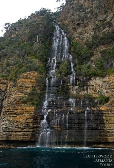 タスマンアイランドクルーズ Waterfall Bay