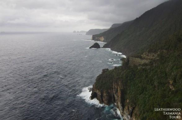 Waterfall Bluff 展望台 タスマン半島